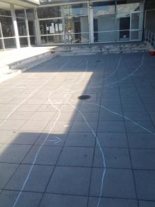 Muriwai in chalk